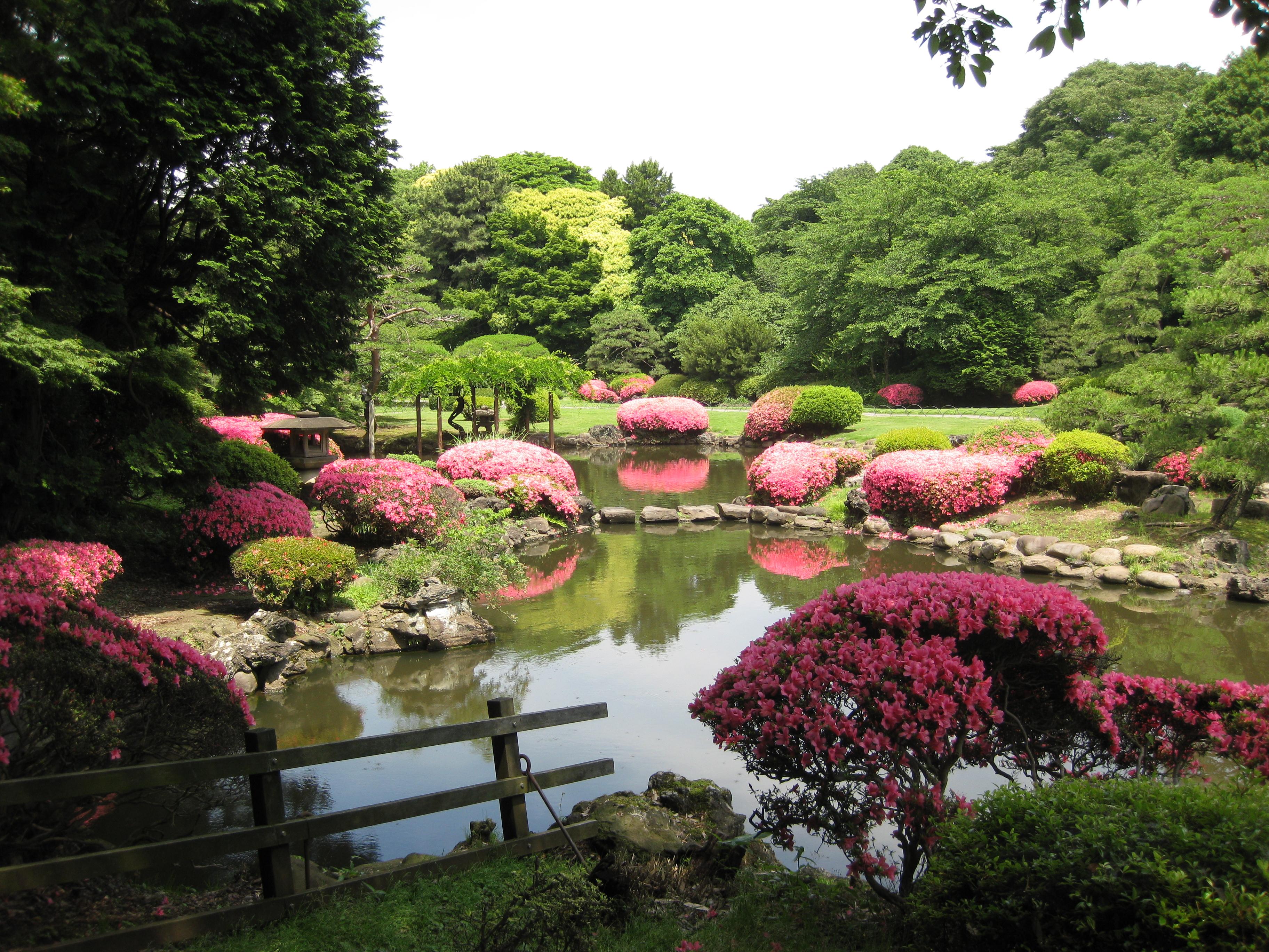 Tokyo: Where Should You Visit?  YouMeSushi